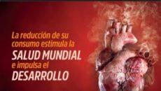 Se suma a la campaña El tabaco rompe corazones para concienciar de las graves repercusiones cardiovasculares de su consumo El Gobierno de Cantabria, a través de la Consejería de Sanidad, […]