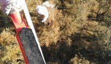 El 112 ha rescatado este sábado a un parapentista que se había quedado colgado de un árbol en la localidad de Cahecho (Cabezón de Liébana) y ha evacuado en Campoo […]