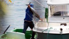 Los capturaban desde una embarcación de recreo y después los trasladaban hasta un camión frigorífico La Guardia Civil de Cantabria, en una investigación contra la pesca furtiva de bonitos en […]