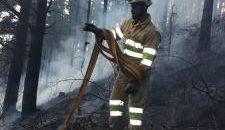 En lo que va de mes, se han provocado en la comunidad 54 incendios, la mayoría desde el pasado martes El Gobierno de Cantabria desactiva a partir de las 23.00 […]