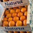 /COMUNICAE/ La empresa NAT FRUIT EUROPE con su marca » NATURA » se adapta a las nuevas exigencias de los mercados extranjeros y propone una gama completa de frutas y […]